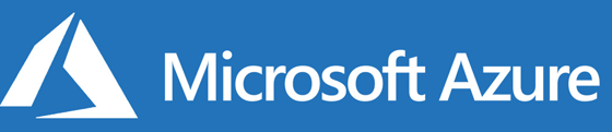Microsoft logo - Network Elites